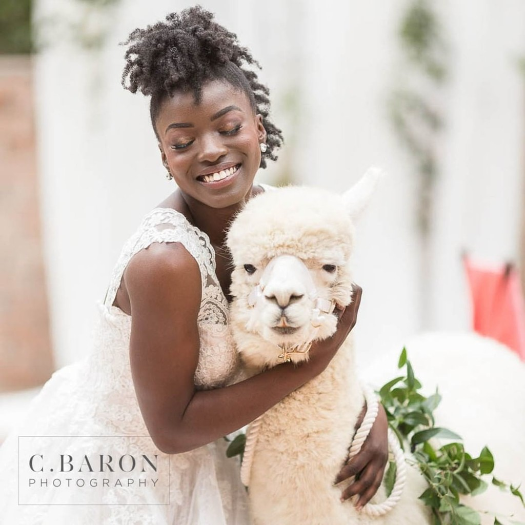 It is hard to resist a smile when you are hugging an Alpaca!