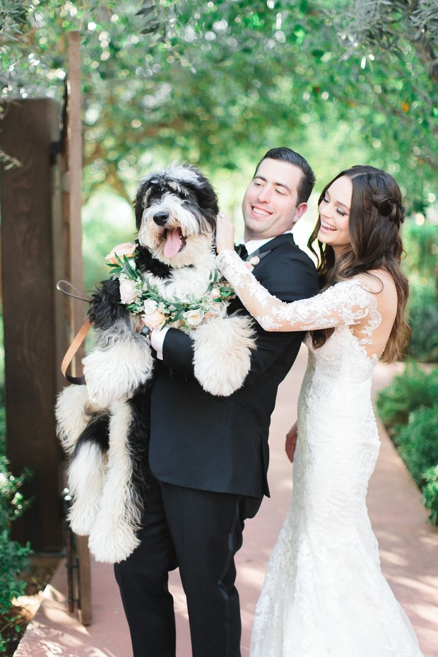 cute wedding pup