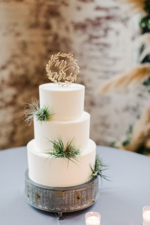 airplant wedding cake