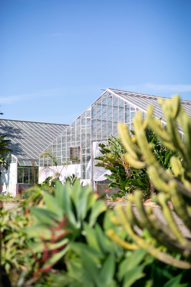 wedding venue greenhouse