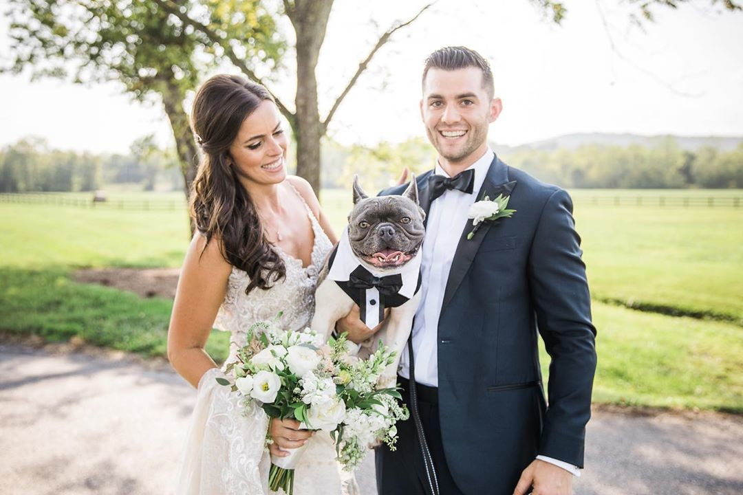 Happy National Dog Day! 🐕 We love seeing pups getting involved in the wedding day celebration 🍾 🎉