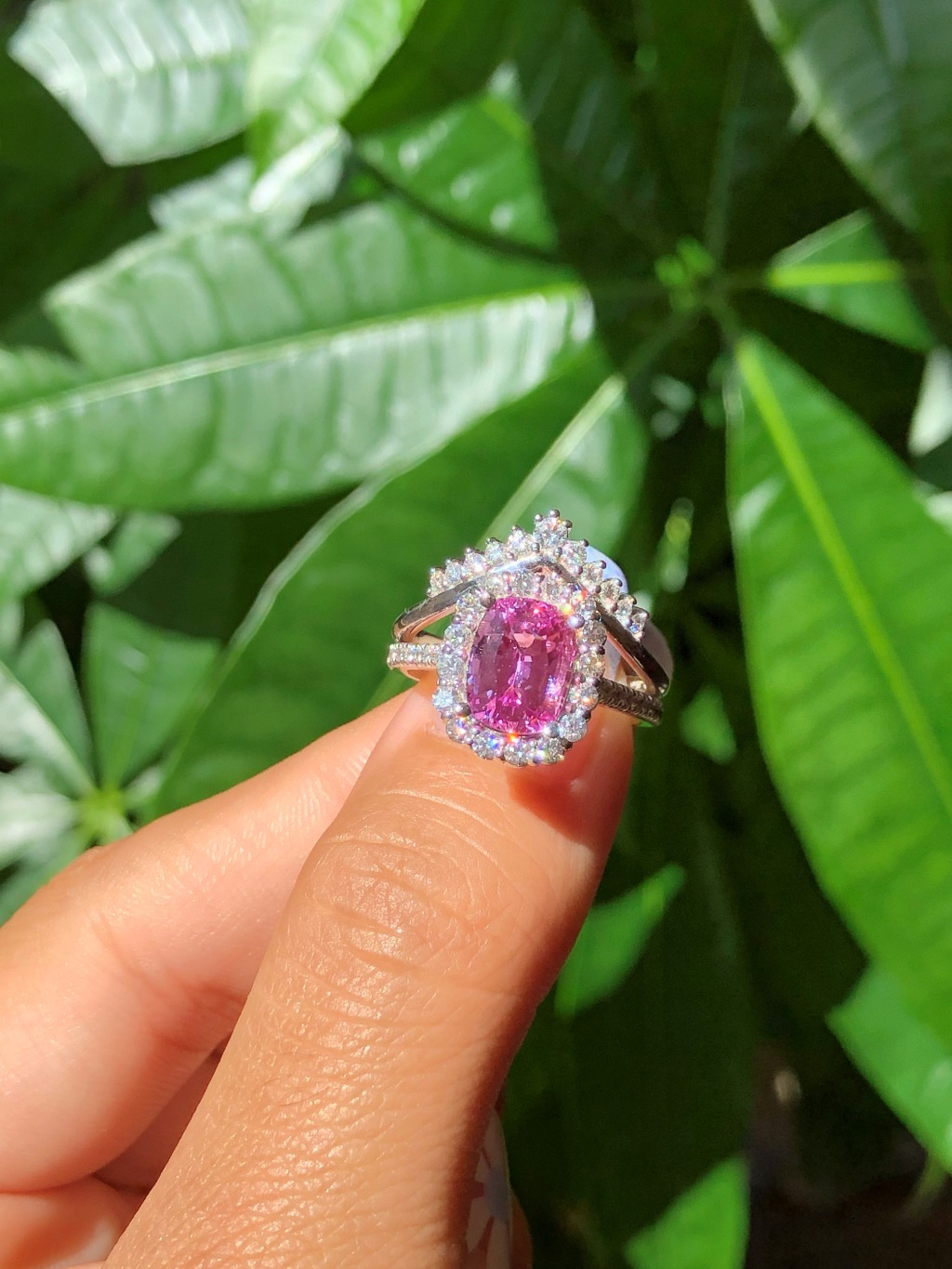 Stunning Pink ~ We paired this exquisite natural large 2.82 carat cushion cut pink sapphire engagement ring in pave diamond band with
