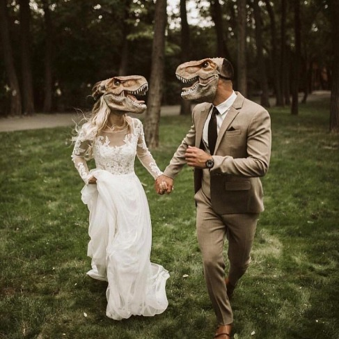 http://lovewc.me/WCIGdinowedding