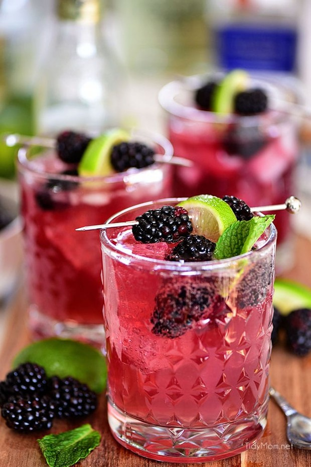 sangria-mexican-mule-photo