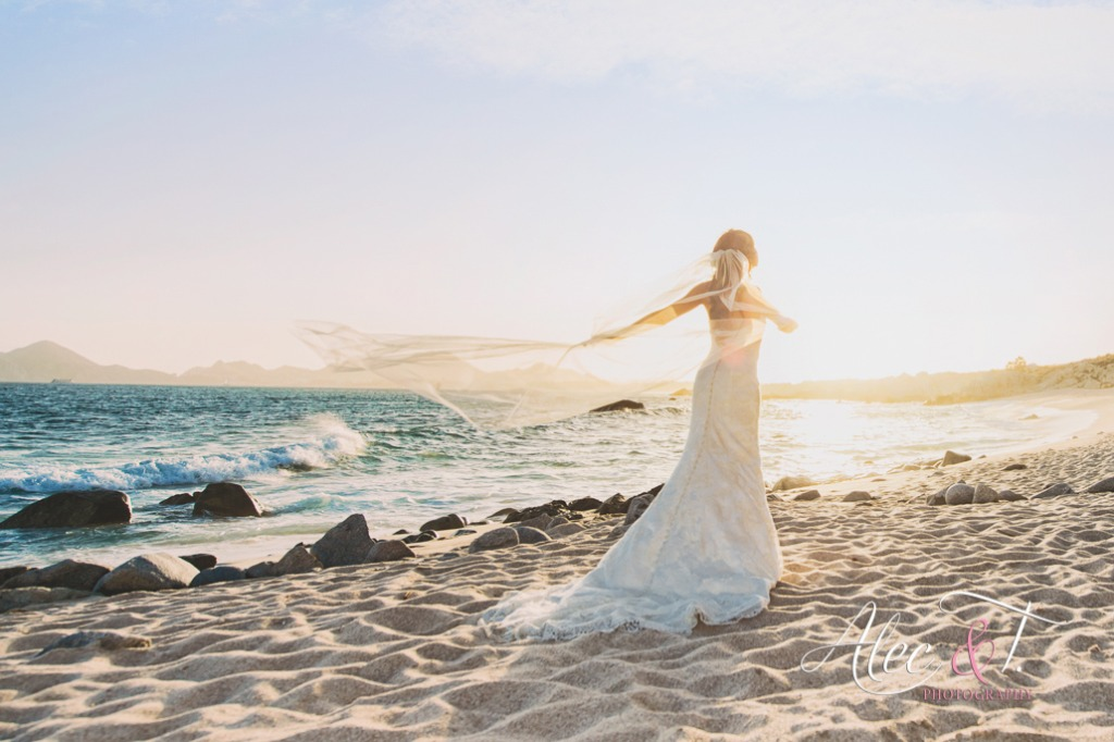 A dream Destination Wedding in Cabo