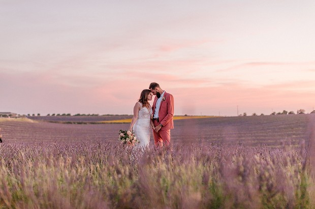 pink sunset in a lavender field