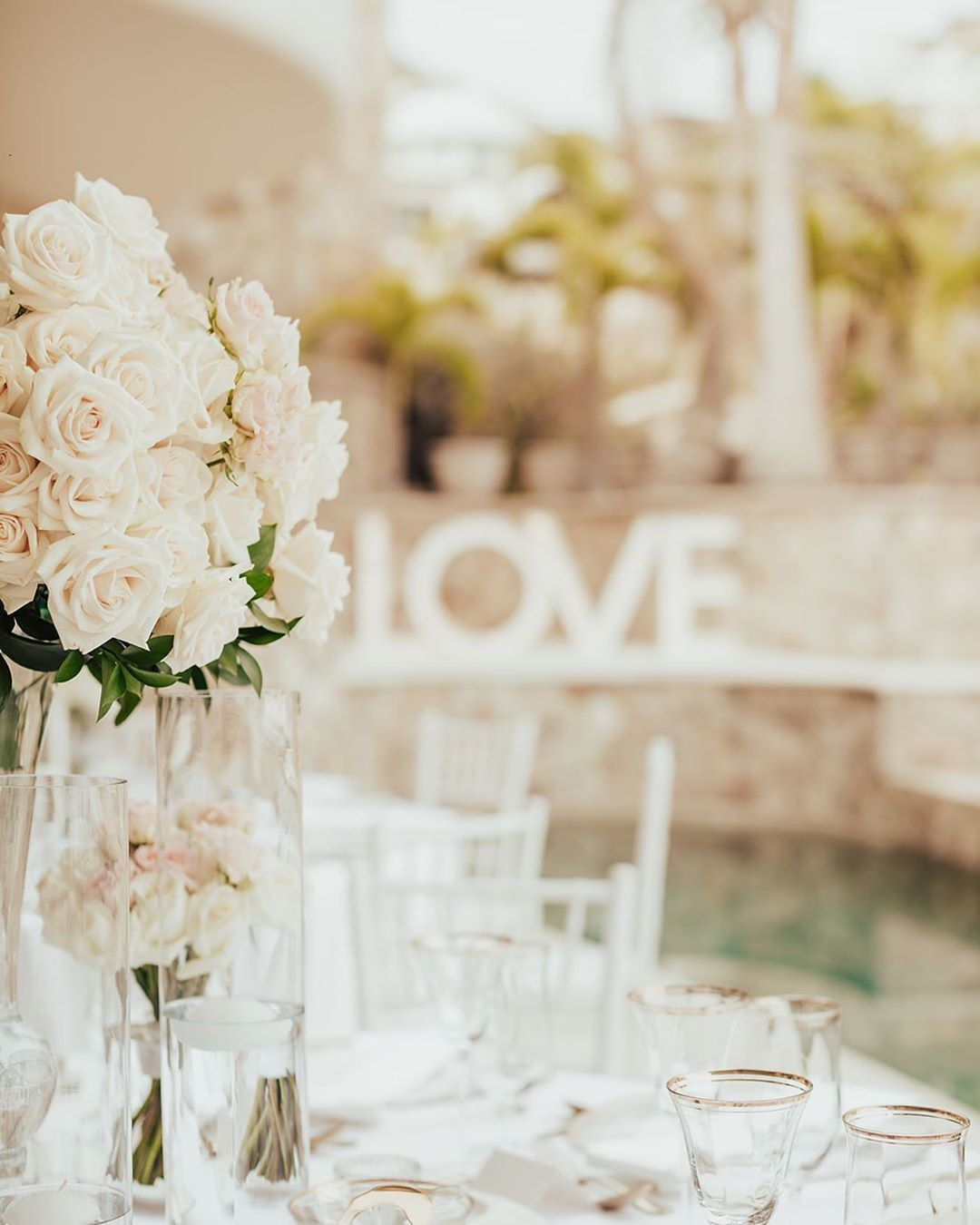 Lots of roses and clean look for this beautiful wedding.