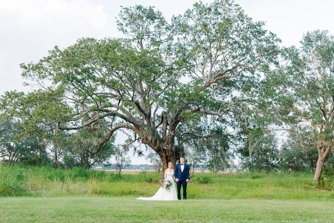 I drove by this oak on the way to Kara and Dylan's venue and knew we had to use it for portraits. Am I the only one who drives around