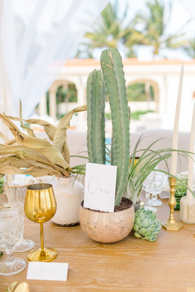 wedding table number with cactus