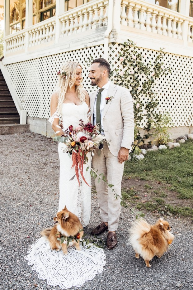 wedding couple and their wedding dogs