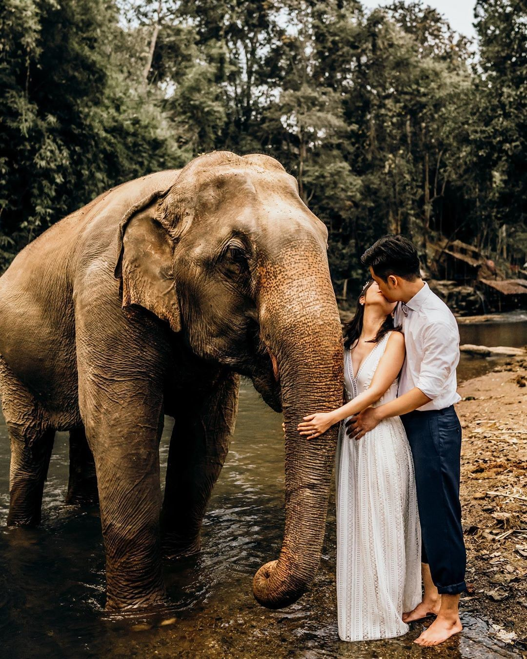 Lenore has a clear vision of her dream wedding photos with elephant in Chiangmai. So when she came to us, she shared her expectations