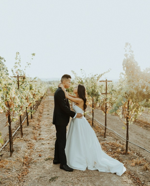 vineyard wedding in Sonoma