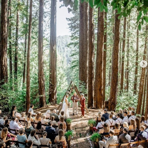 https://www.weddingchicks.com/blog/a-magical-forest-wedding-day-in-blush-and-burgundy-l-18104-l-43.html