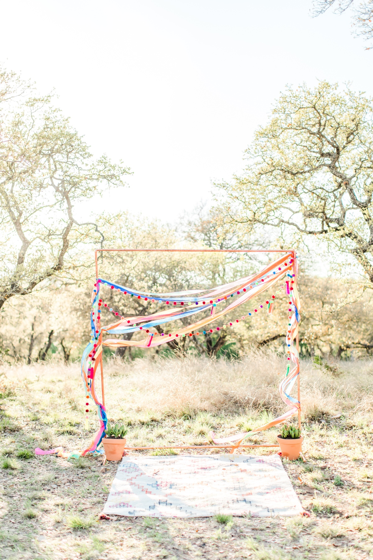 Fiesta themed wedding ideas