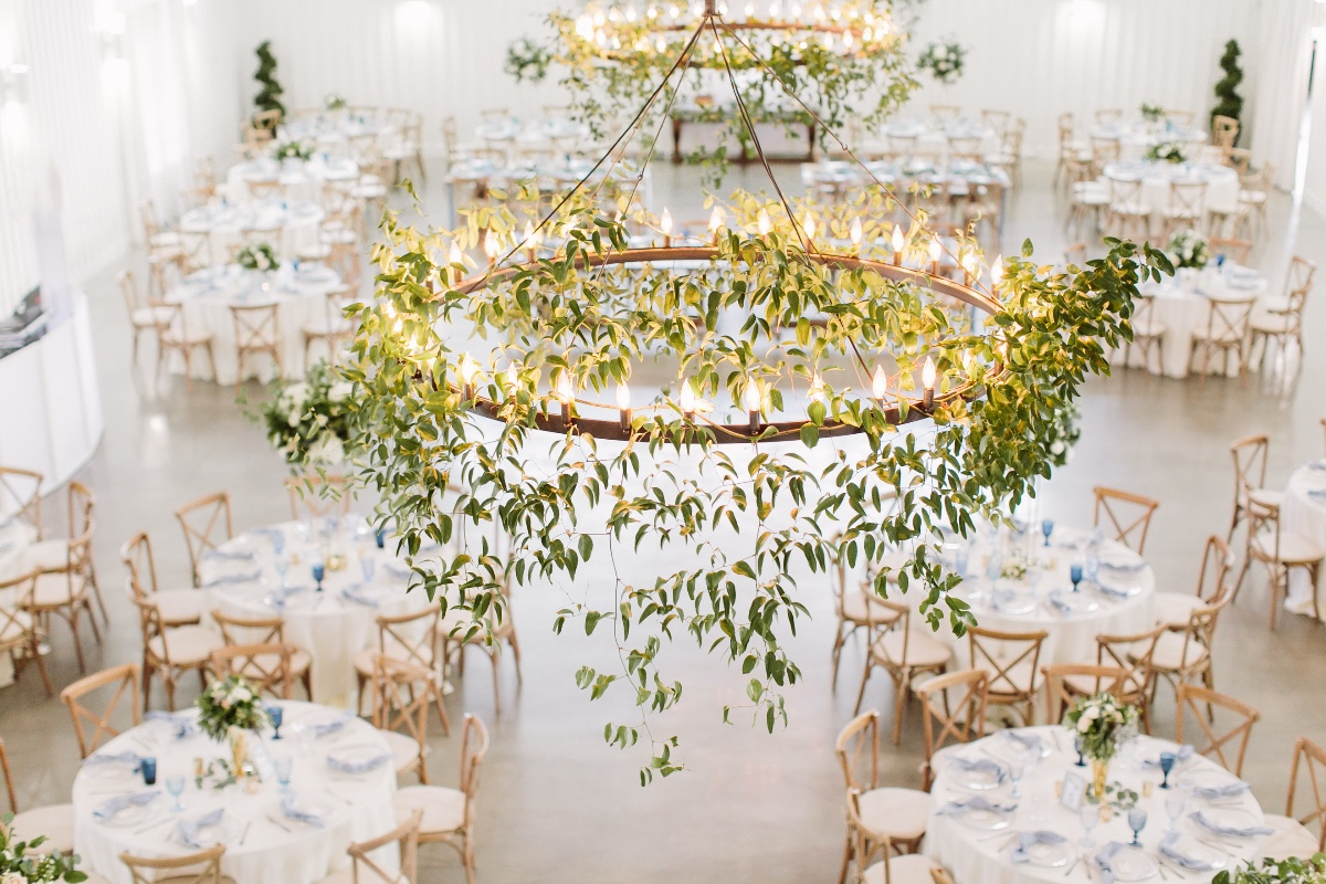 greenery hanging from lights