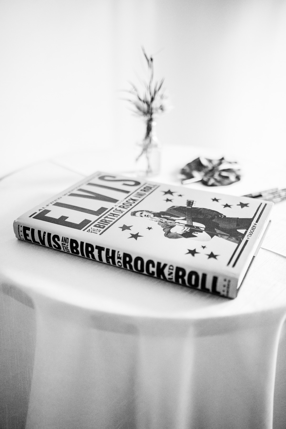 Elvis Rock and Roll Book