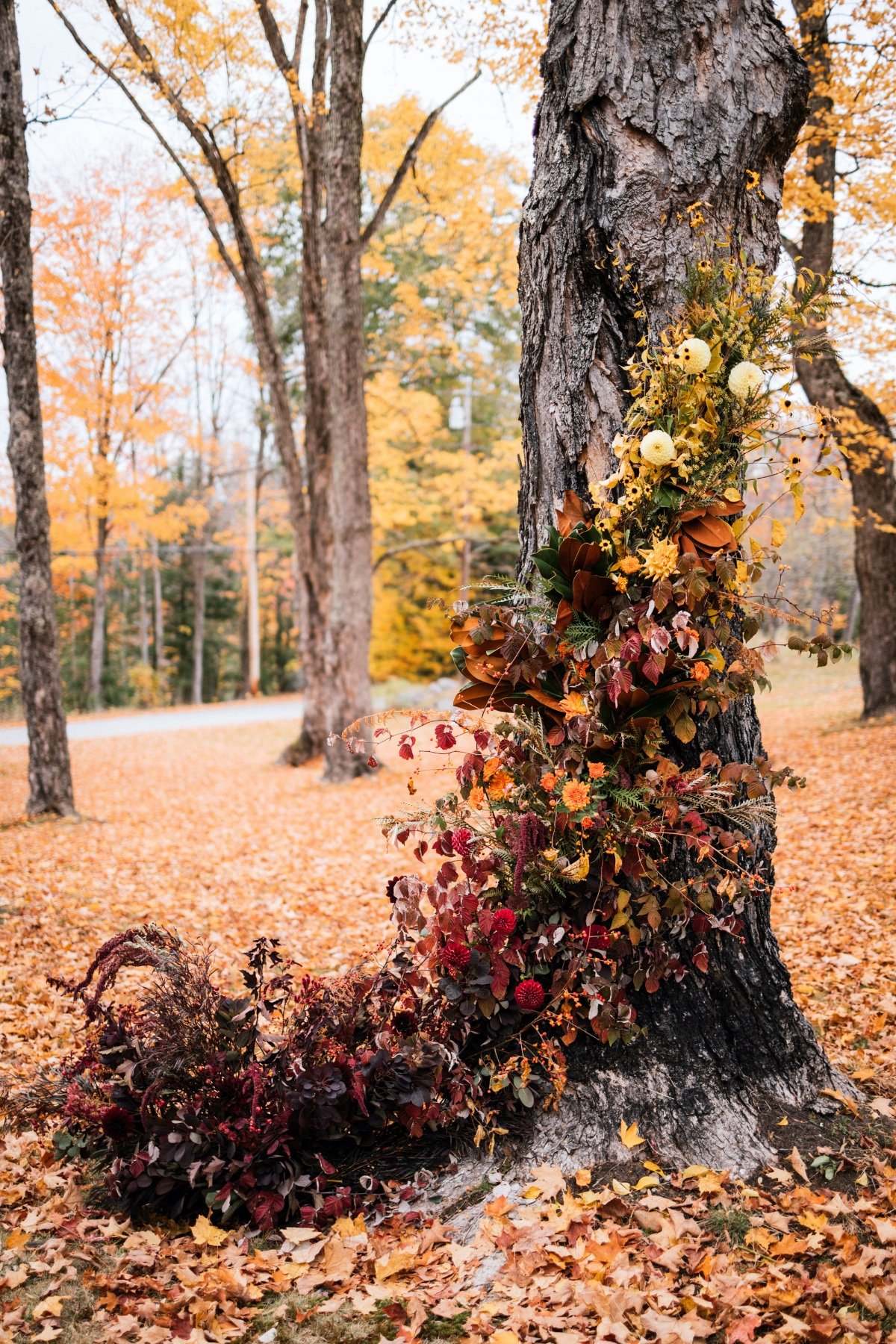 beautifully decorated tree for Fall wedding