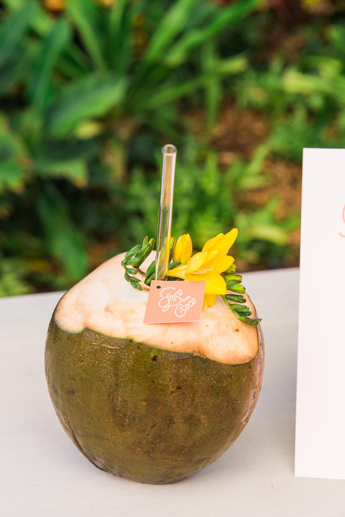 Loco For Coco signature wedding cocktail