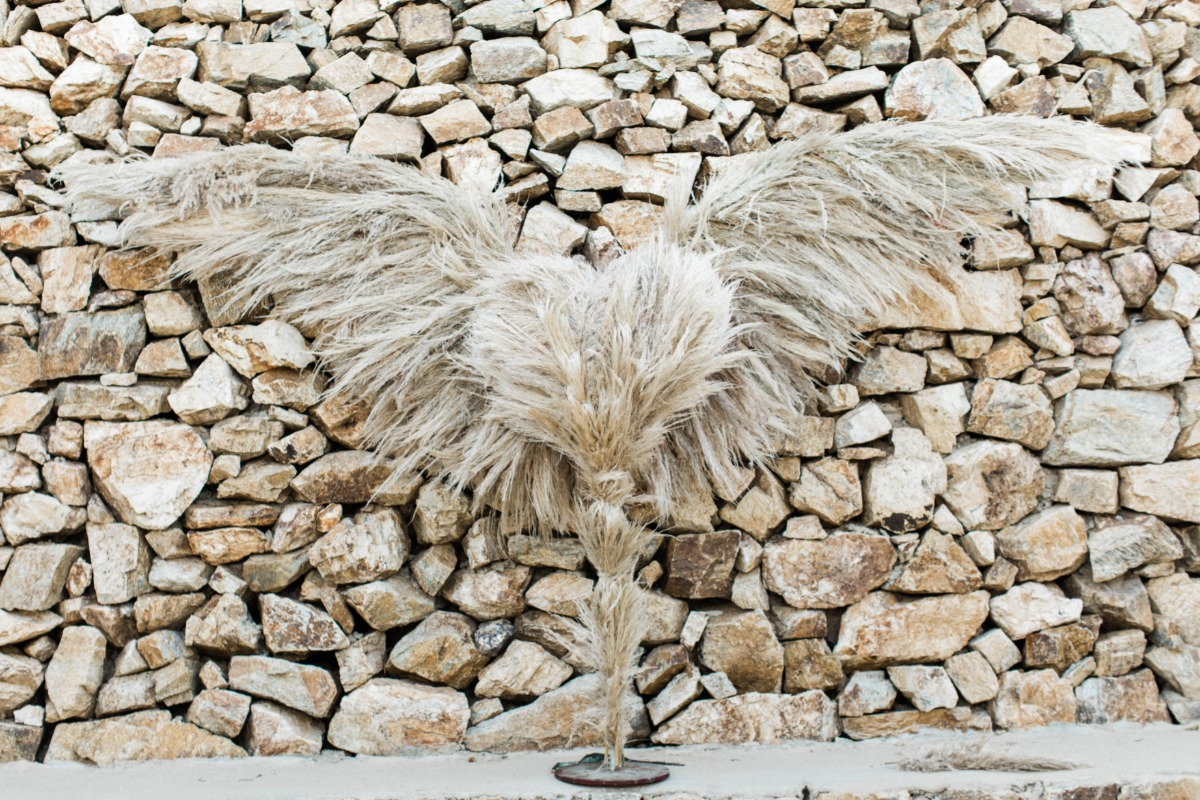 angel wing wedding backdrop created out of dried grasses
