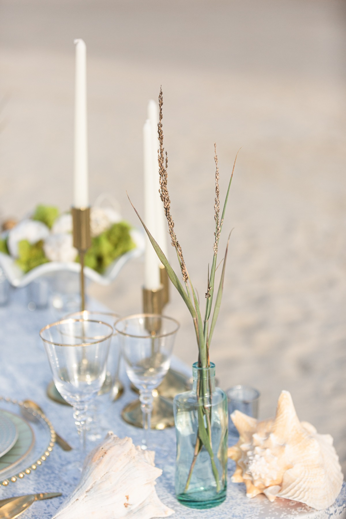 sea grass placed in glass bottle