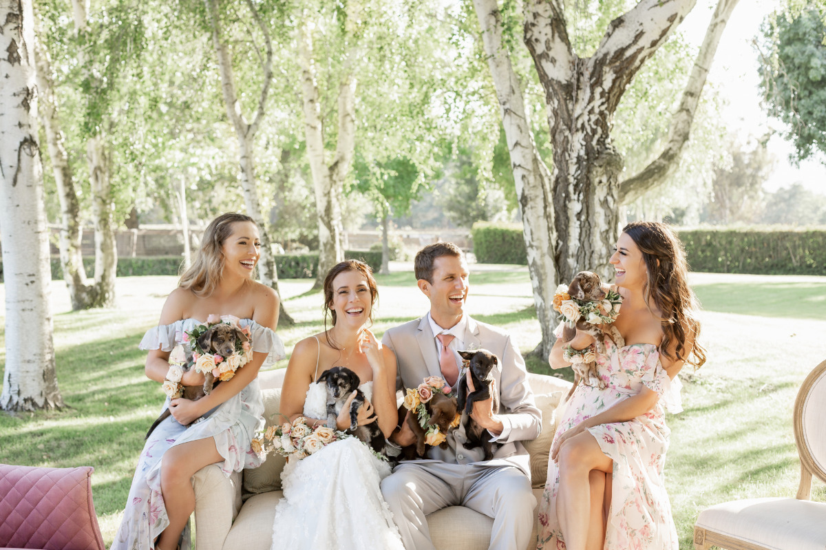 Puppies Galore in This Earthy, Artistic Wedding Inspiration Shoot
