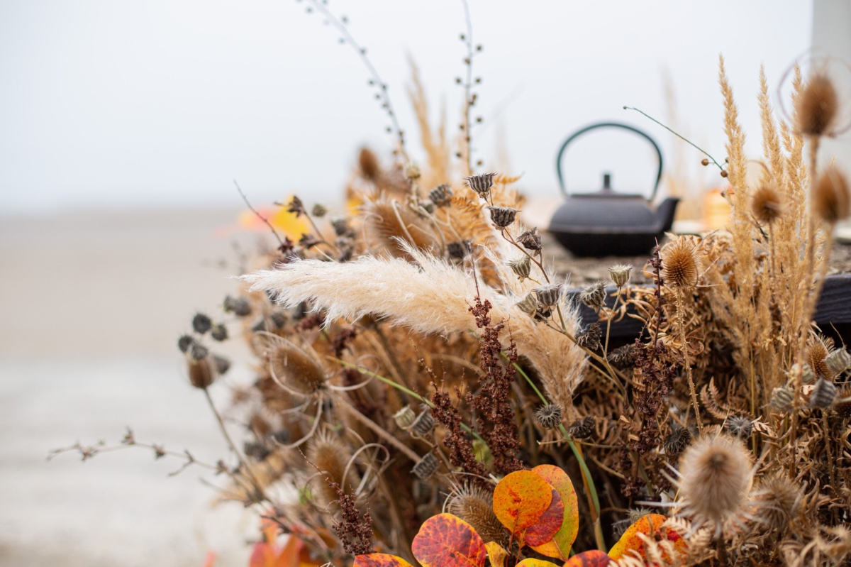 A Natural Tea Ceremony in Italy by the Seaside
