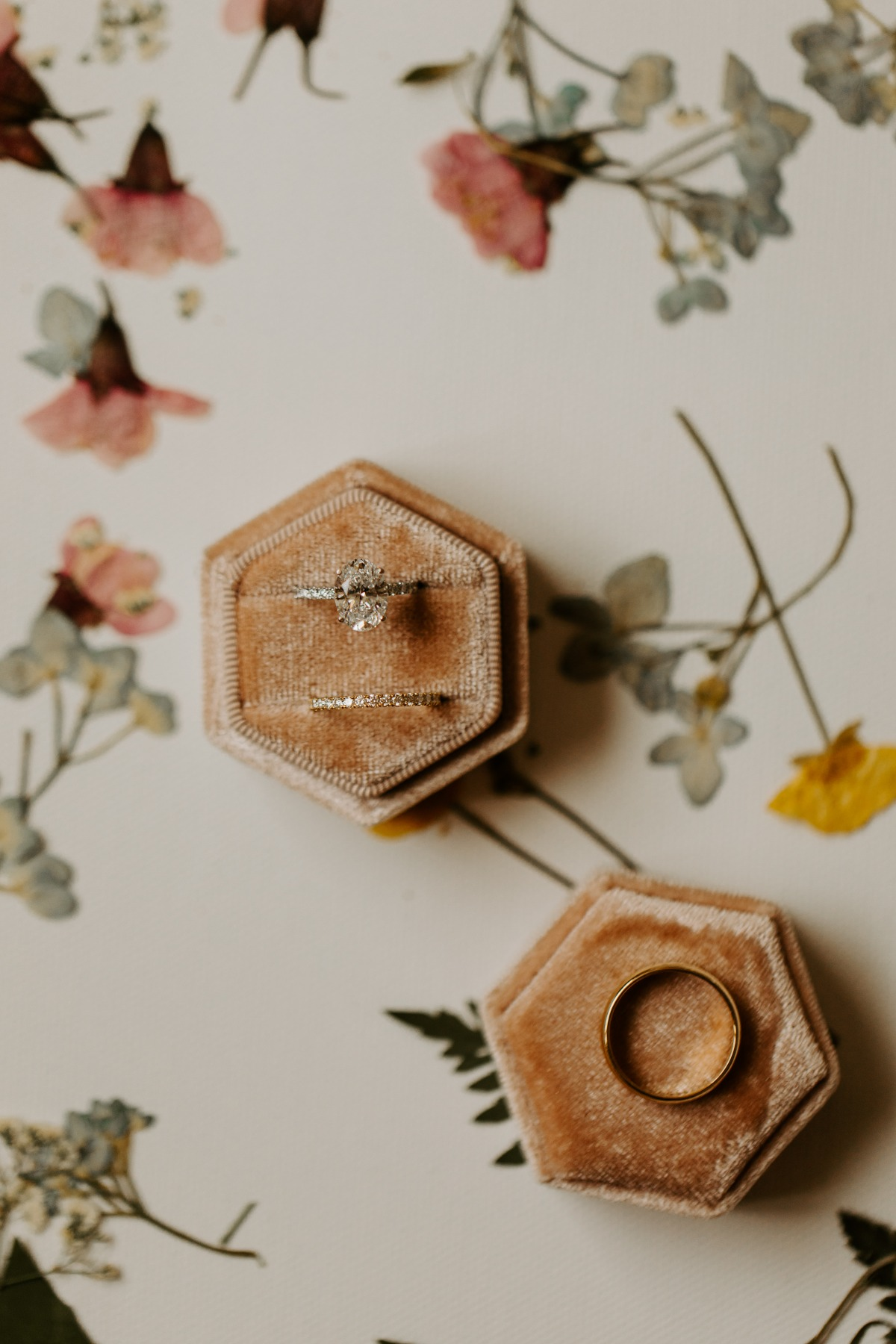 Pressed Flowers Are Our New Obsession