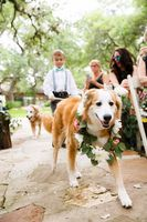 The Knot's Top Trends in Weddings for 2016